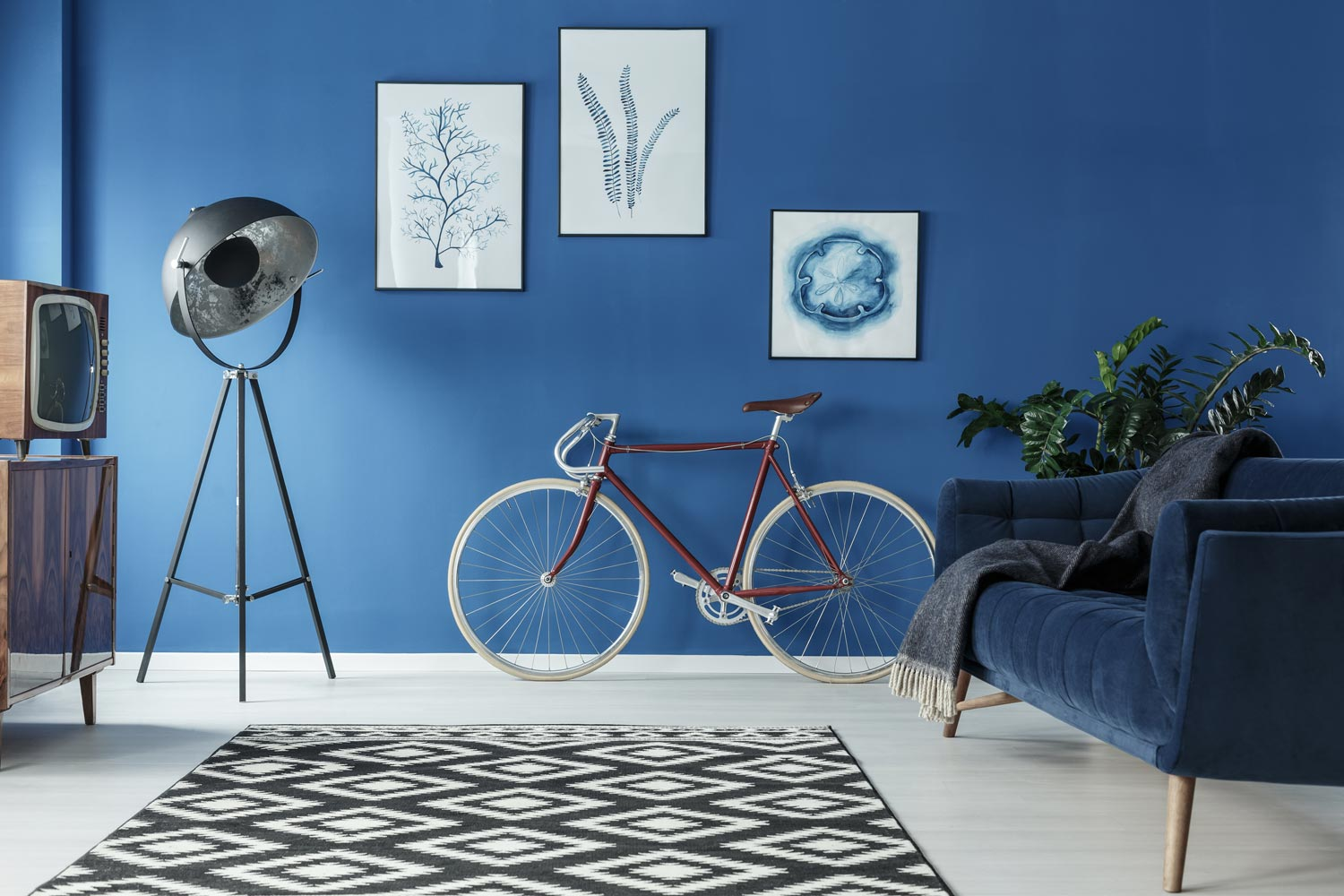 A modern living room interior in blue paint wall and bicycle and vintage lamps and TV sets on the white floor with the black and white pattern carpet and suede blue couch with the grey throws